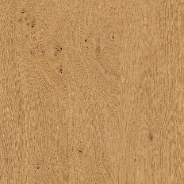 Rocca F734 Natural knotty oak, brushed